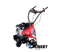 Pubert POWER BS 6 HPIC